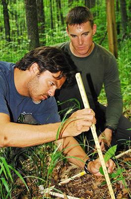 Photo of scientists measuring tree saplings.
