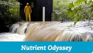 Nutrient Odyssey
